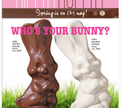 Yummy Bunnies for Easter Fundraising