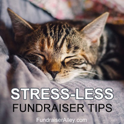 Stress-Less Fundraiser Tips