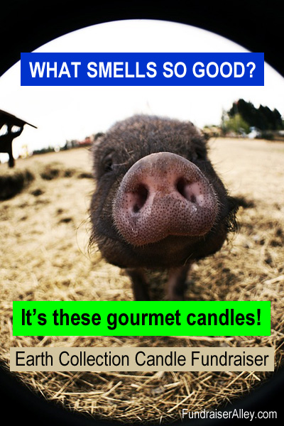 What Smells So Good? It's these gourmet candles! Earth Collection Candle Fundraiser