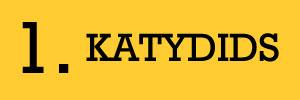 1 - Katydids Candy Fundraiser