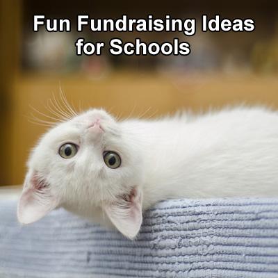 Fun Fundraising Ideas for Schools