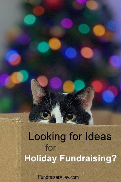 Looking for Ideas for Holiday Fundraising?