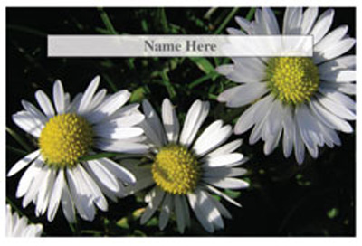 Flowers/Daisies Theme Scratchcards