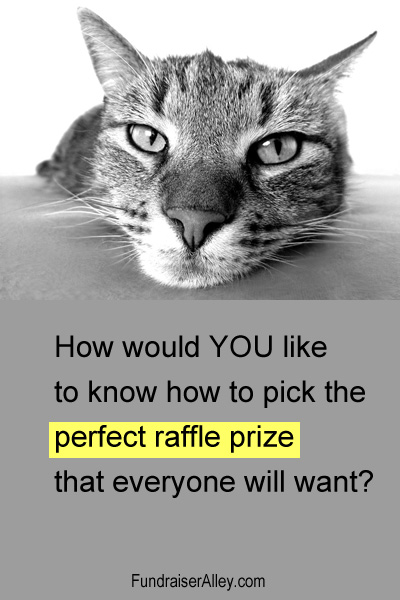 How would YOU like to know how to pick the perfect raffle prize that everyone will want?