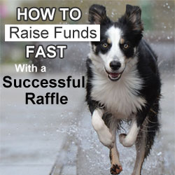 How to Raise Funds Fast With a Successful Raffle