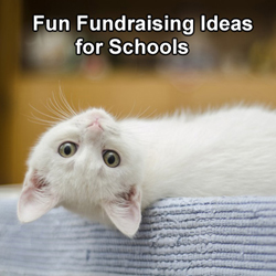 Fun Fundraising Ideas for Schools