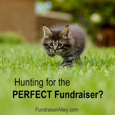 Hunting for the Perfect Fundraiser?