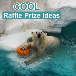 Cool Raffle Prize Ideas
