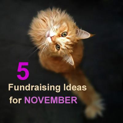 5 Fundraising Ideas for November