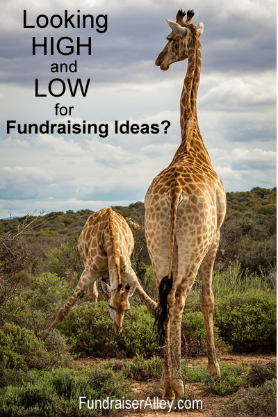 Hunting High and Low for Fundraising Ideas?