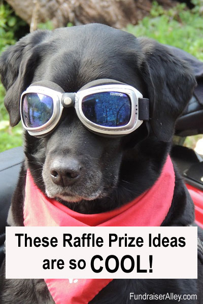 These Raffle Prize Ideas are so COOL!