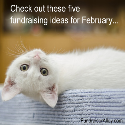 Five Fundraising Ideas for February