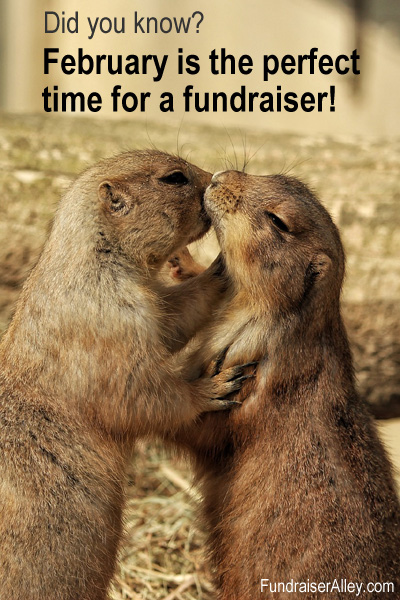 February is the perfect time for a fundraiser!