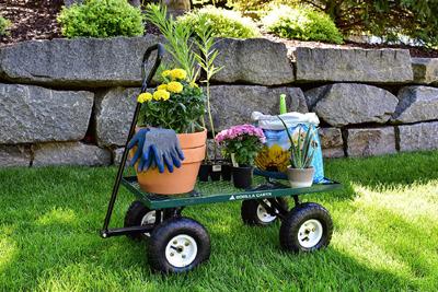 Gorilla Cart - Amazon.com
