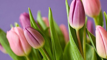 Spring Raffle Prize Ideas