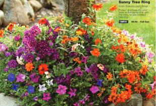 Flower Bulb Order-Taker Fundraiser