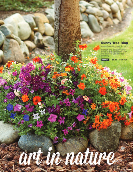 Art in Nature Flower Bulb Order-Taker Brochure