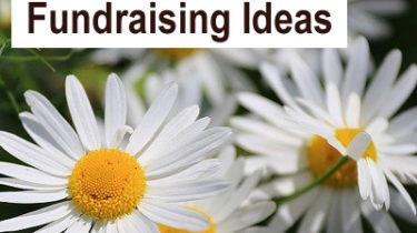 June Fundraising Ideas