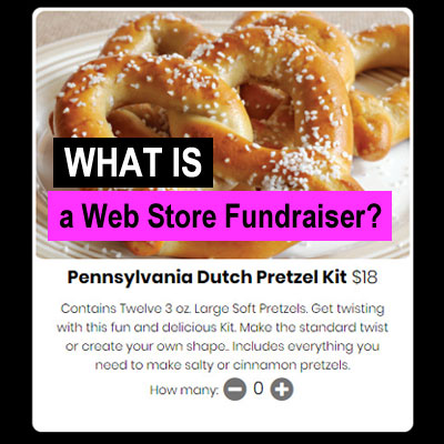 What Is a Web Store Fundraiser?